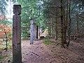 Mythos Wald trail Harz 03.jpg