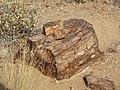 Namibia - P9133868 (15307208045).jpg