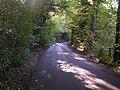 Narrow country lane - geograph.org.uk - 71019.jpg