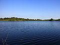 Nationaal Park Drents-Friese Wold. Locatie Fochteloërveen. Brunstingerplas 01.JPG