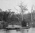 Natives and canoe (1 of 2), Ron-Kite Village, Kite Harbor, Ponape (1899-1900).jpg