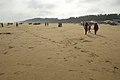 New Digha Beach - East Midnapore 2015-05-01 8883.JPG