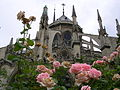 Notre Dame Cathedral from gardens of Sq Jean XXIII.JPG