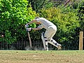 Nuthurst CC v. Henfield CC at Mannings Heath, West Sussex, England 056.jpg
