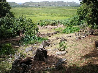 Ulupo Heiau State Historic Site - Image: Oahu Kailua Ulupoheiau gardenview across Kawainui