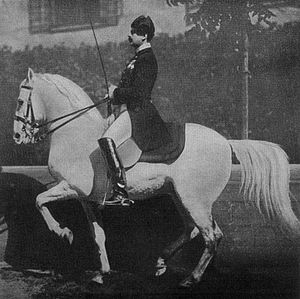 Piaffe - Chief Rider Meixner on Neapolitano Bona