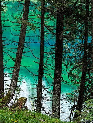 Colour gradient of green water at Obernberger See. Obernberg am Brenner, Tyrol, Austria