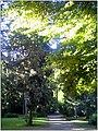 October University Freiburg Plaza - Master Botany Photography 2013 - panoramio (3).jpg