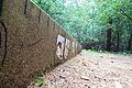 Odrzykozuch forest (animal jump).JPG