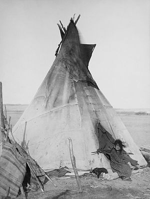 Oglala tipi, girls, puppy