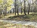 Oktyabrskiy rayon, Saratov, Saratovskaya oblast', Russia - panoramio (48).jpg