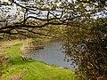 Old Loch - panoramio (2).jpg