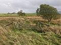 Old railway access crossing - geograph.org.uk - 668674.jpg
