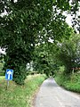 One-way road to Erpingham from Norwich Road - geograph.org.uk - 538413.jpg