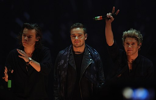 One Direction at 214. Wetten, dass.. show in Graz, 8. Nov. 2014 02