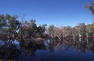 Fortescue River river in Australia