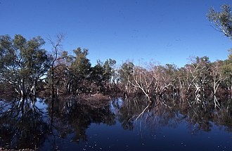 Fortescue River - Ophthalmia Dam, Fortescue River