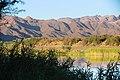 Oranjefloden-2304 - Flickr - Ragnhild & Neil Crawford.jpg