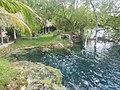 Orilla en el Cenote Azul, Q. Roo, México. - panoramio.jpg