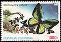 Ornithoptera goliath, 1000rp (1993).jpg