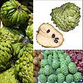 Owoce Atemoya.jpg