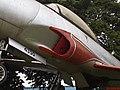 Pássaros na Entrada da Turbina do avião T-33 Shooting Star - panoramio.jpg