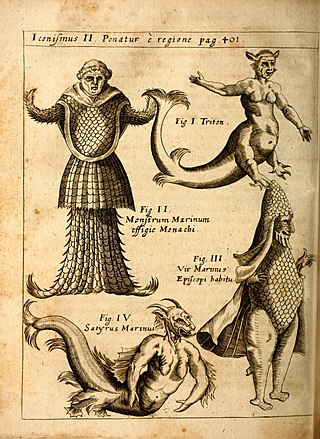 P. Gasparis Schotti, regis curtani ... Physica curiosa, sive, Mirabilia naturæ et artis libris XII. comprehensa (Pl. II) BHL41531037.jpg