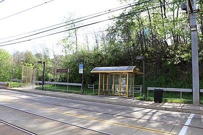 Cómo llegar a Palm Garden en transporte público - Sobre el lugar