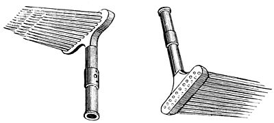 PSM V39 D311 A pair of hand combs.jpg