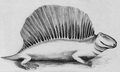 PSM V73 D566 Restoration of dimetrodon (cropped).png