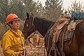 Packer with horse on Klamath National Forest (16183947509).jpg