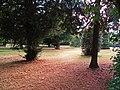 Palace grounds, Hampton Court. - panoramio.jpg