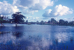 Pantanal in flood condition