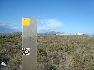 Parc Natural del Prat de Cabanes i Torreblanca.jpg