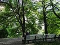 Park Scene - Tallinn - Estonia (35219383273).jpg