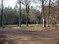 Parking and picnic area at Micheldever Wood - geograph.org.uk - 113586.jpg