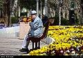 Parks in Tehran in Nowruz 2019 11.jpg