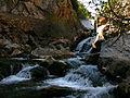 Parque Natural Sierra de Cazorla Curso alto del río Guadalquivir - Cerrada del Utrero.jpg