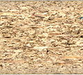 Particle board-cross section scan.jpg