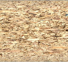 Image Result For Can A Carpet