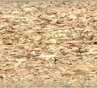 Particle board - The cross section of a particle board