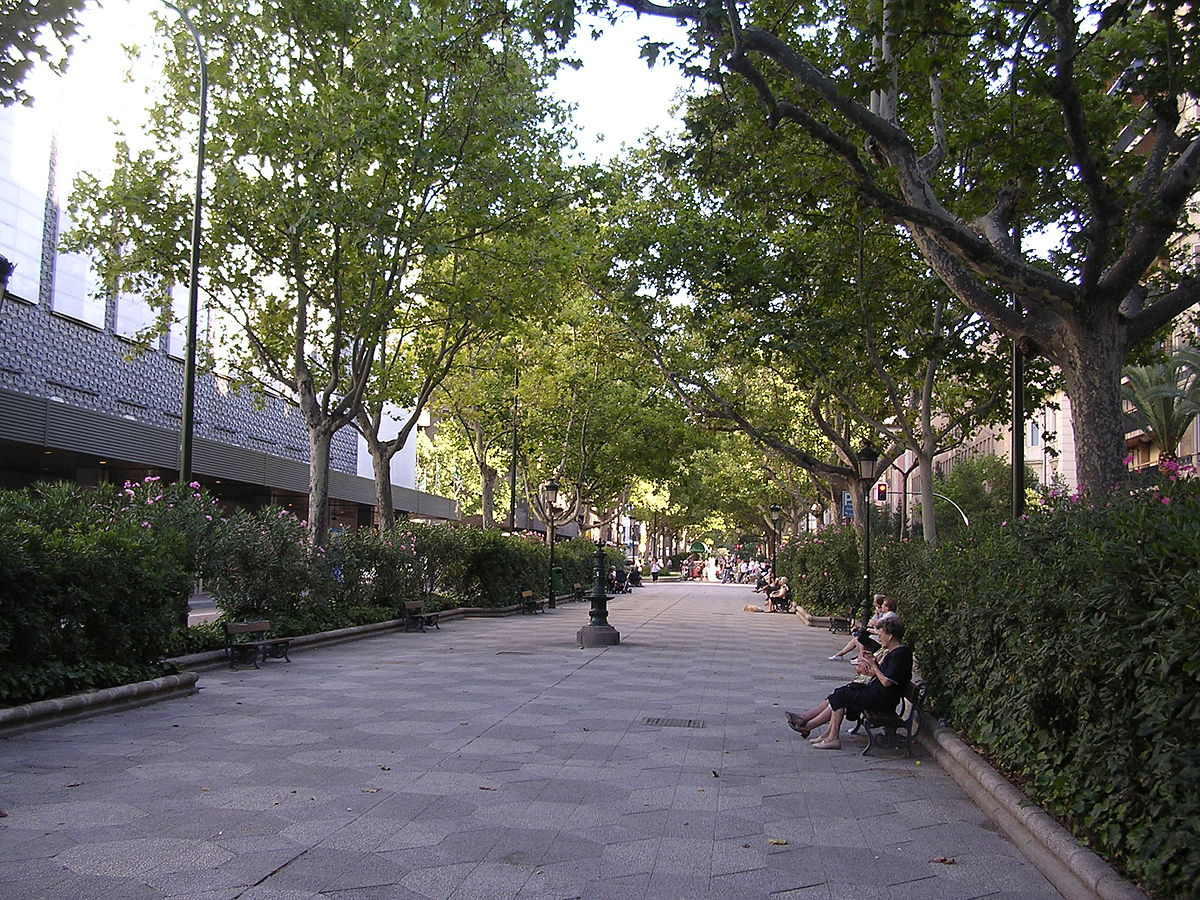 Paseo por la calle en brasil 25 - 2 3