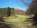 Pasture Near 'The Glen' - geograph.org.uk - 682632.jpg