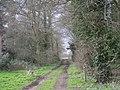 Path through the woods - geograph.org.uk - 758985.jpg