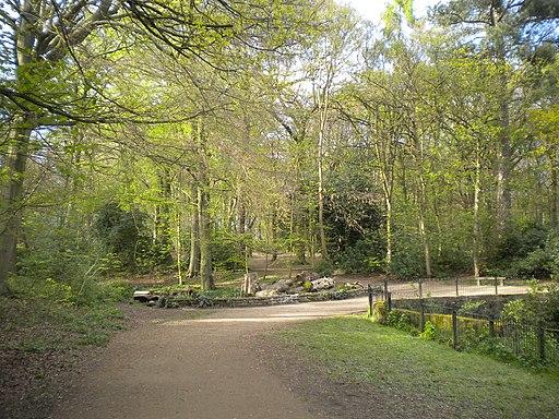 Path towards Ram Wood, Roundhay Park (geograph 5435436)