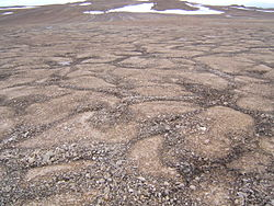 Patterned ground devon island.jpg