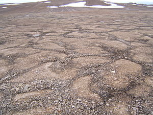 Devon Island - Patterned ground permafrost pattern seen on Devon Island