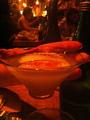 Peach Absinth Martini.png
