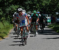 Pellizotti - Route du Sud 2012.jpg