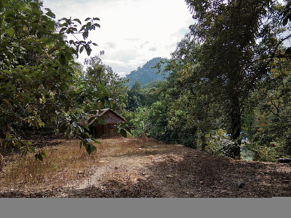 File Pemandangan Alam Di Objek Wisata Tangkahan